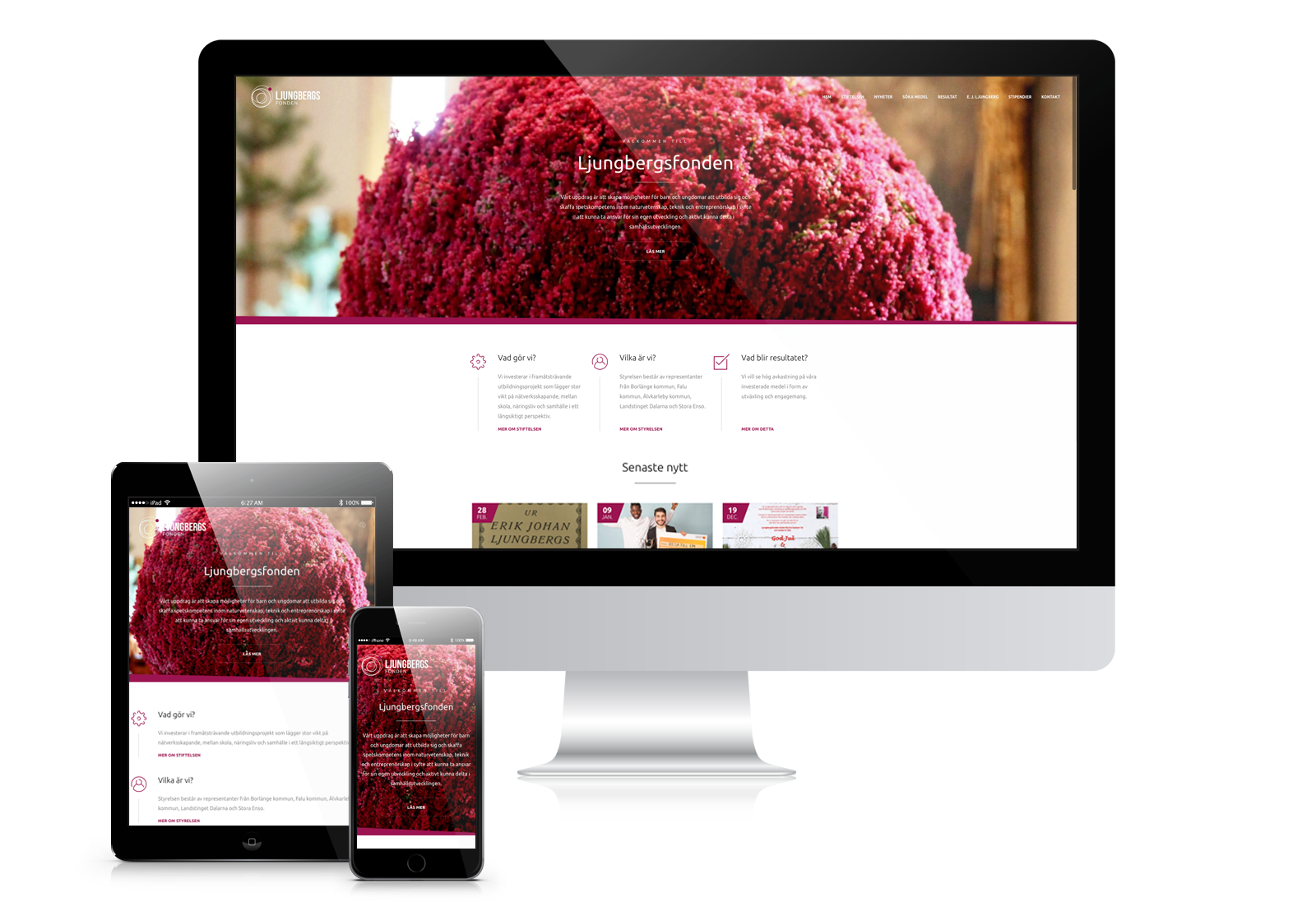 Ny webb till Ljungbergsfonden gjord av Panang Kommunikation i Falun, Dalarna
